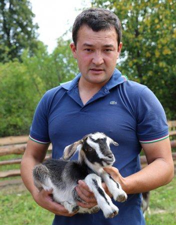 Из деревни  Шишкино