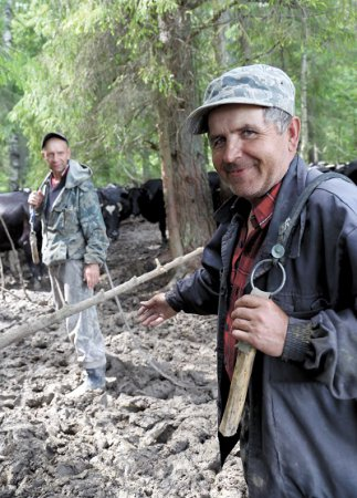 В поисках сельской пасторали