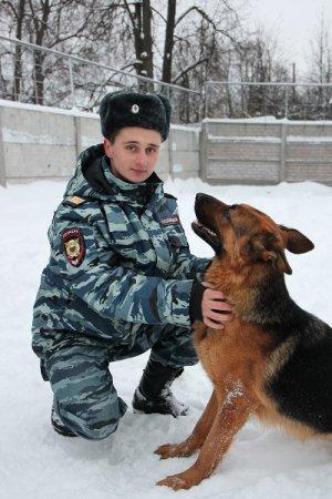 Полицейская  собака Сьюзи