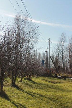 Настоящая беда - в огороде провода