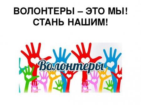 Запись в волонтёры стала возможна на нижегородском портале «Команда правительства»
