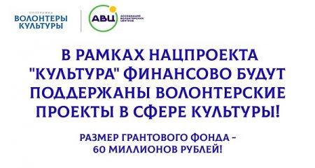 Нижегородские волонтеры культуры могут принять участие во всероссийском конкурсе грантов