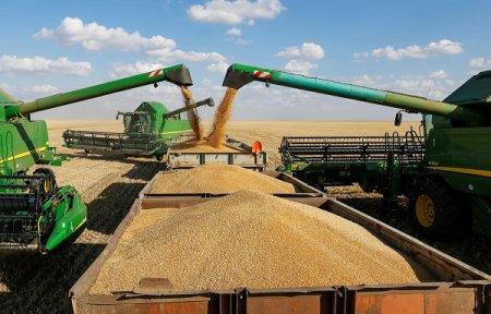 Глеб Никитин: «Нижегородские аграрии  уже собрали 1,5 млн тонн зерна»